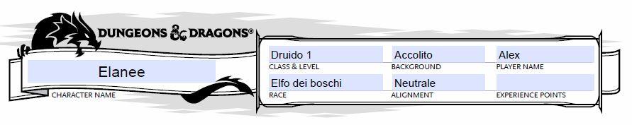 D&D 5 scheda