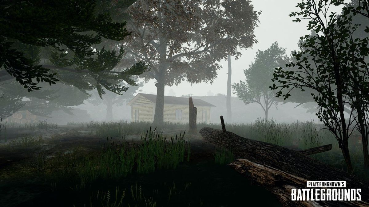 PlayerUnknown's Battlegrounds: Bluehole Studios si aspettava 300 mila copie vendute al massimo