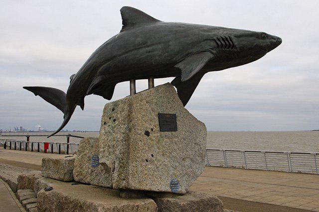 Statua dello squalo