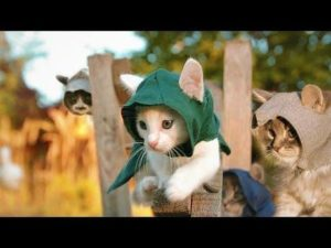 assassin's creed accarezzare gli animali