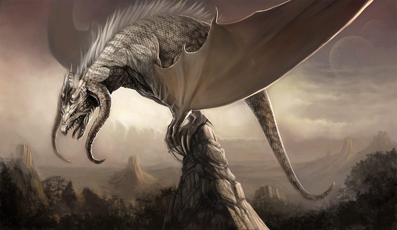 Drago D&D