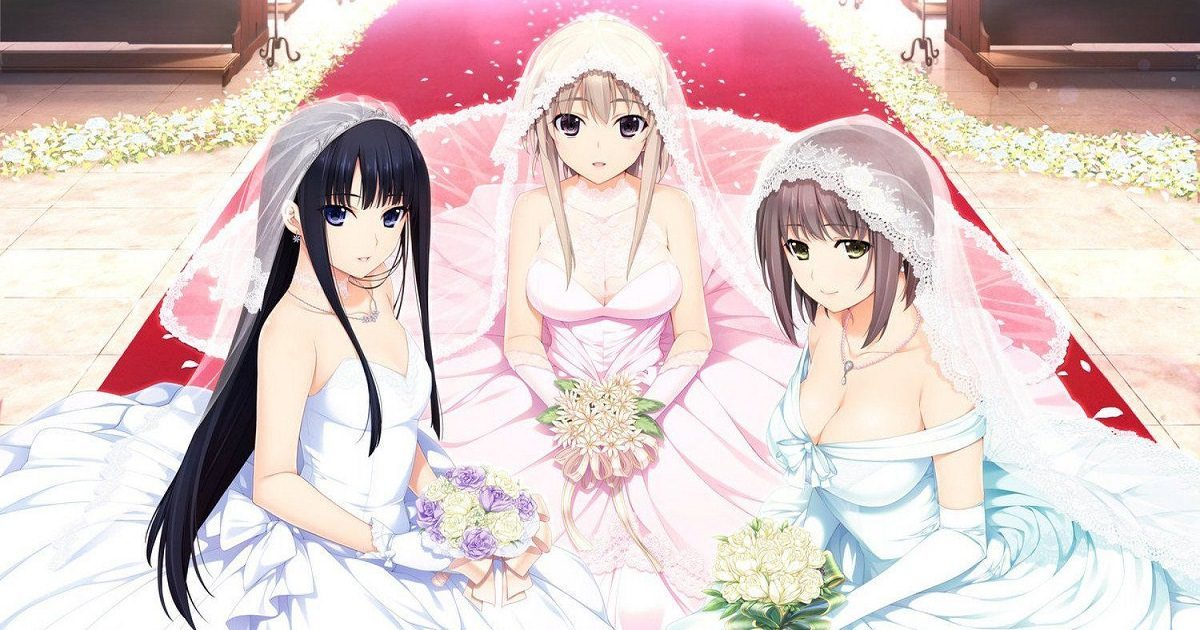 matrimoni 2D giappone waifu