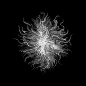 Dark Souls Remastered guida anima guardiana del fuco estus
