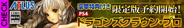 dragon-s-crown-pro-banner