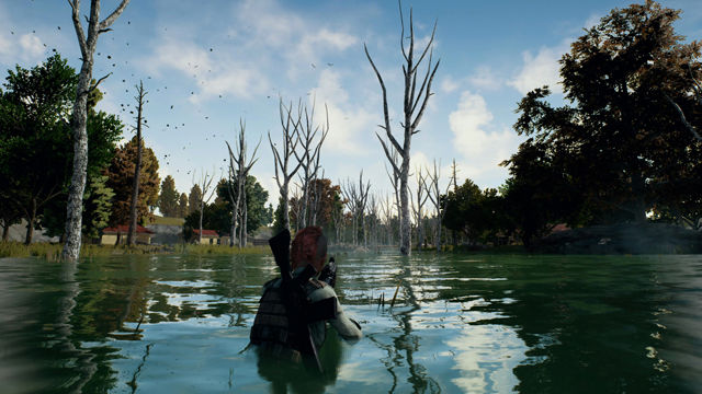 playerunknown-s-battlegrounds-bluehole-non-si-aspettava-un-grande-successo