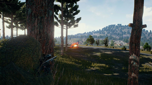 playerunknown-s-battlegrounds-bluehole-studio-diventana-pubg-corporation