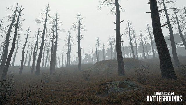 playerunknown-s-battlegrounds-dettagli-aggiornamento-nebbia