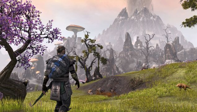 the-elder-scrolls-online-attacco-hacker-server-europei