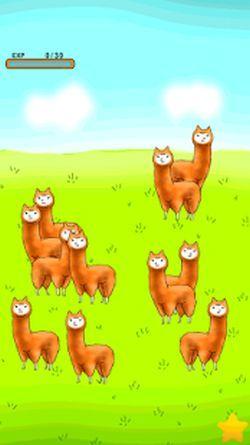 trucchi-alpaca-evolution-avere-massimo-alpaca