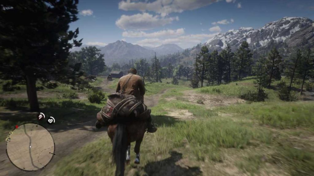 Red Dead Redemption 2 a cavallo pelle