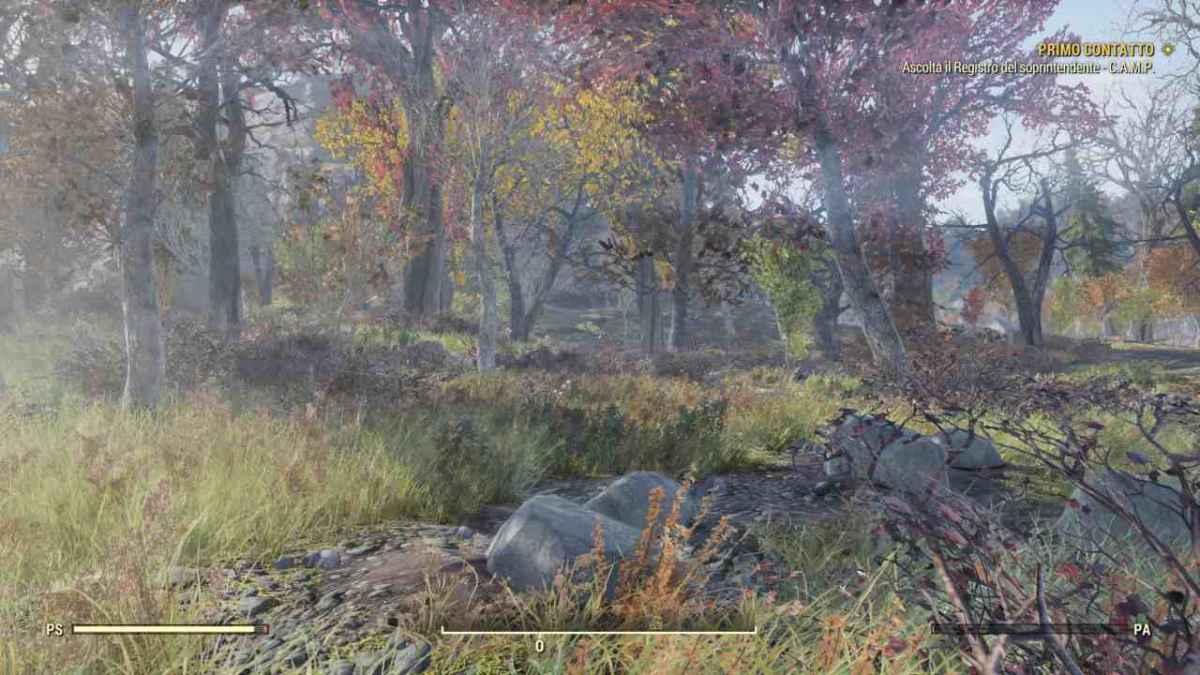Boscaglia nell'open world di fallout 76
