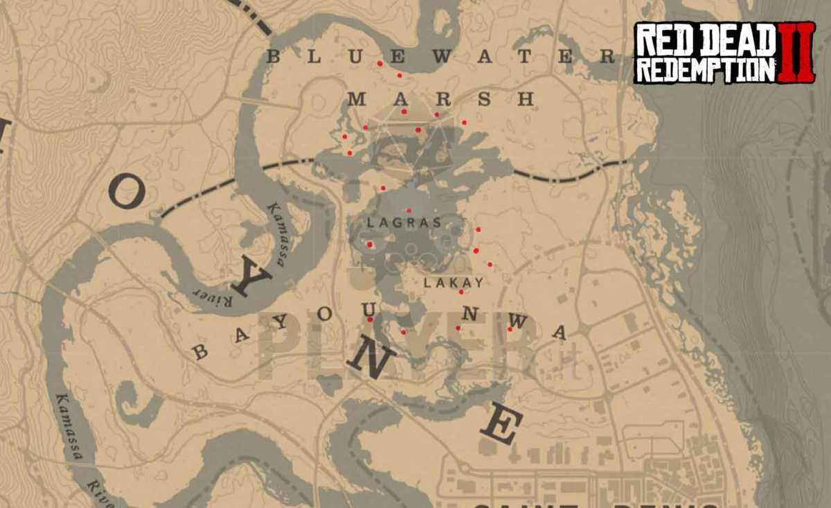 red dead redemption 2 dove trovare l'orchidea rat tail