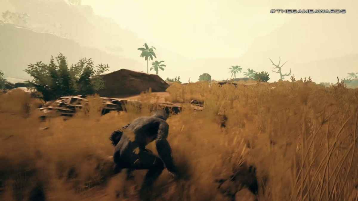 Screen tratto dal gameplay di Ancestors dove un australopiteco si nasconde nell'erba alta della savana