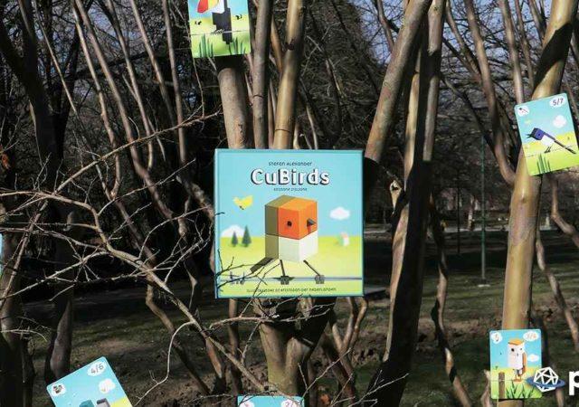 Cubirds, la recensione del gioco da tavolo di MS Edizioni