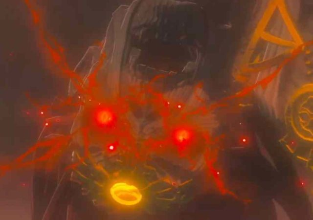 Player-The Legend of Zelda Breath of the Wild 2-screenshot 2