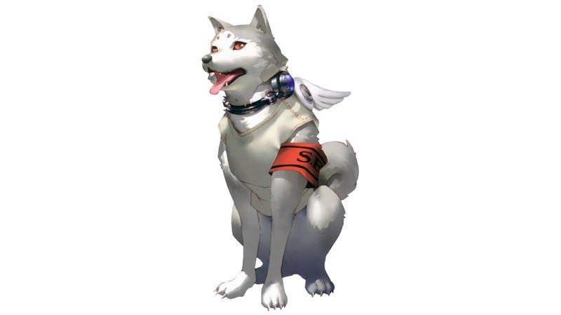Koromaru, uno dei personaggi di Persona 3