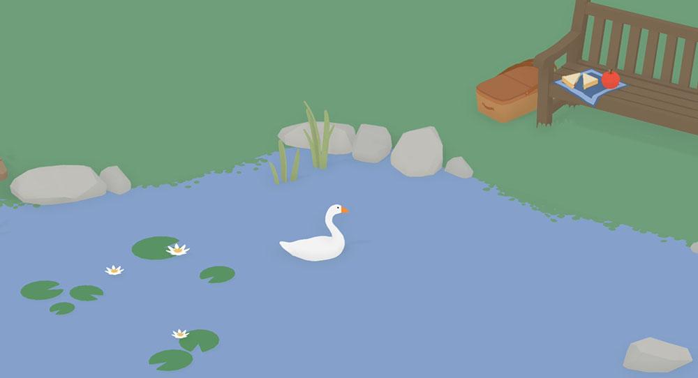 oca nel laghetto