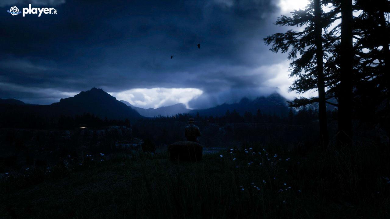 Paesaggio solitario notturno in Red Dead Redemption 2