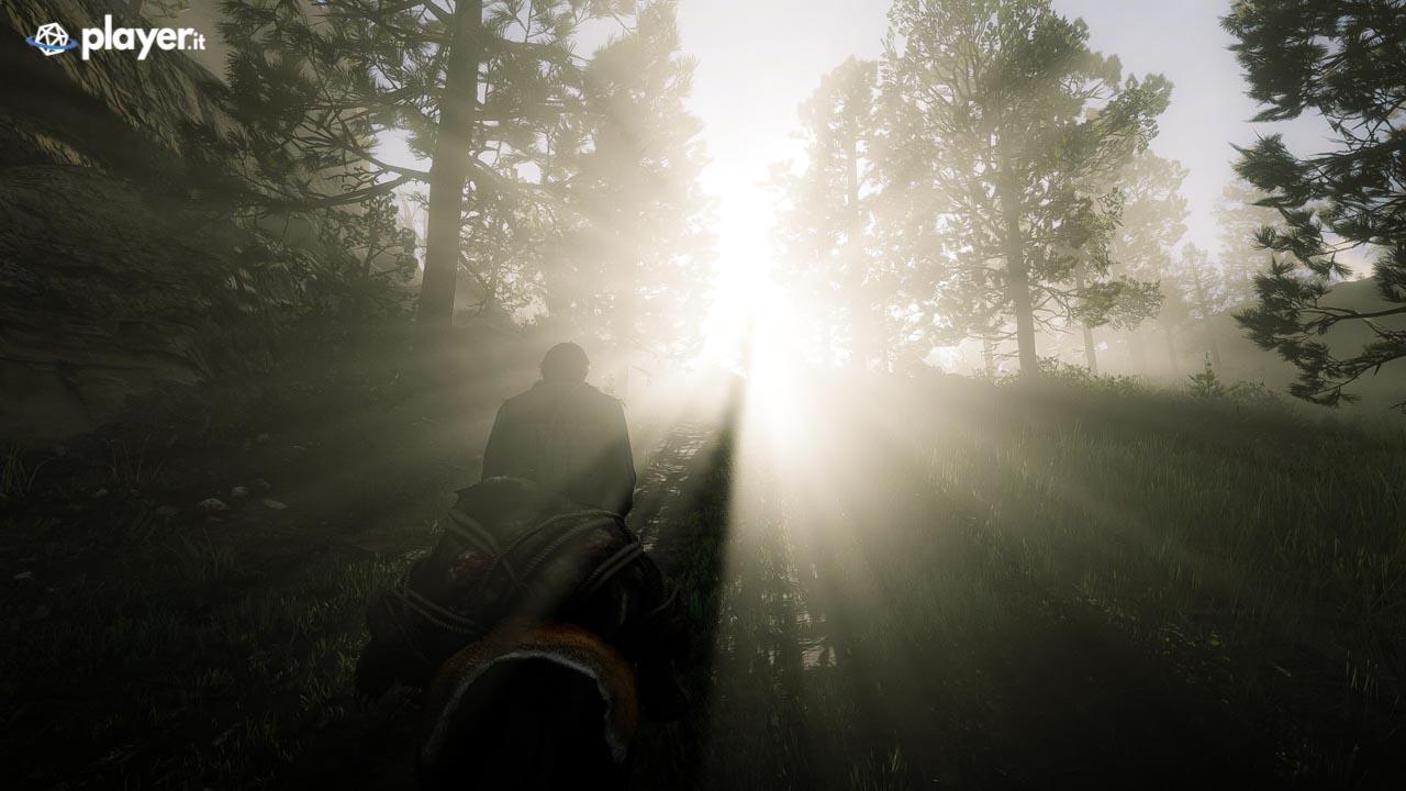 A spasso con il carro in Red Dead Redemption 2