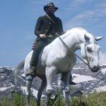 guida red dead online sui migliori cavalli e le migliori selle
