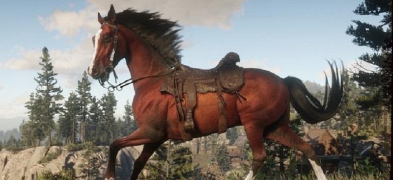 guida alle selle e ai cavalli di red dead online