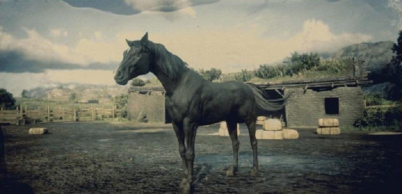 guida ai cavalli di red dead online