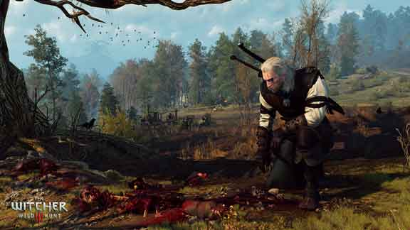 tutti i tesori di the witcher 3