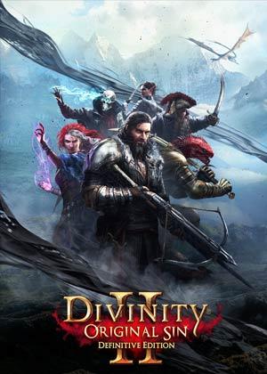 divinity: original sin 2 copertina del gioco
