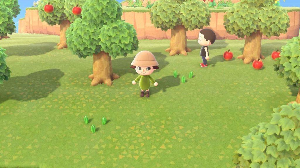 Animal Crossing New Horizons raccolta delle mele