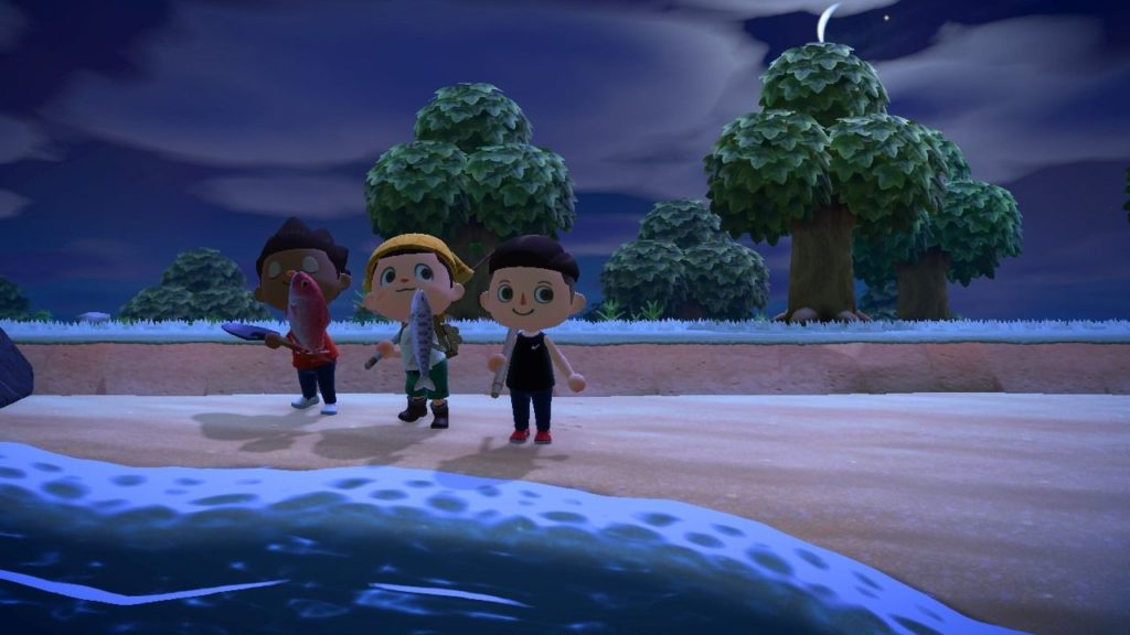 Animal Crossing New Horizons pesca in compagnia