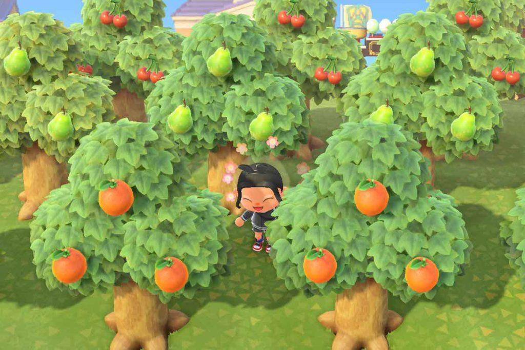 come ottenere frutti perfetti in animal crossing new horizons