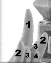 schema numerico per il Rumour Engine