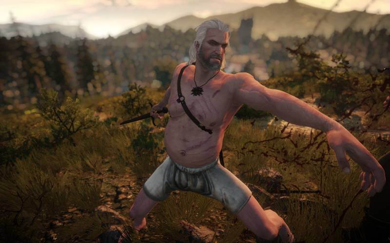 The Witcher 3, Geralt di Rivia, CD Projekt RedThe Witcher 3, Geralt di Rivia, CD Projekt Red