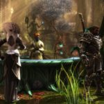 Kingdoms of Amalur, Kaiko, THQ Nordic