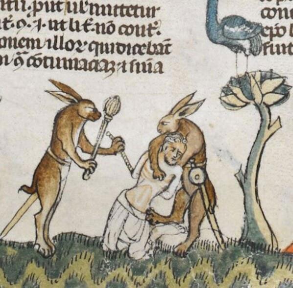 conigli medievali