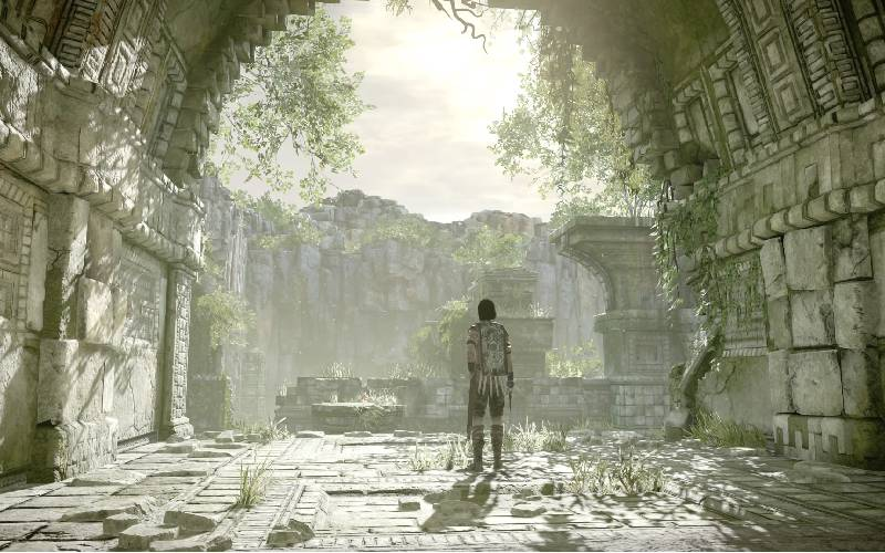 Shadow of The Colossus, Shadow of the Colossus spiegazione finale, Shadow of the Colossus finale, Shadow of the Colossus interpretazione finale, team Ico, Wander