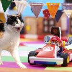 mario kart live home circuit gatti