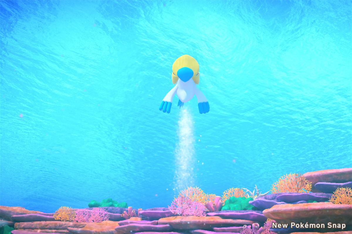 Pelliper sott'acqua