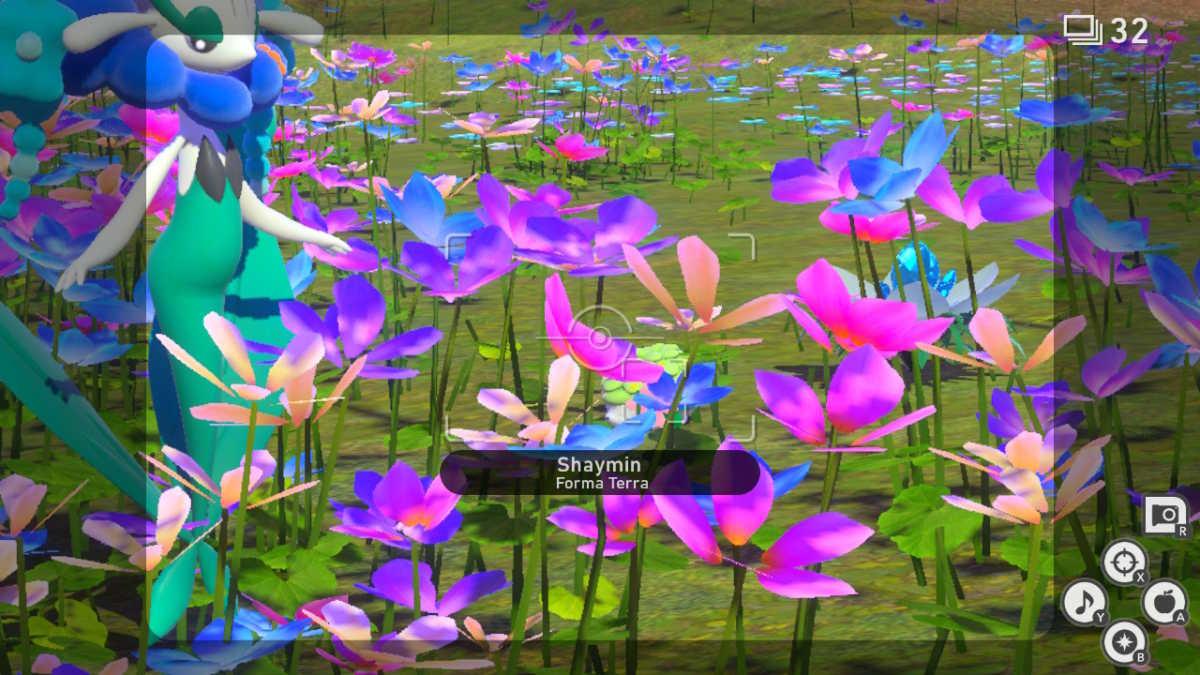 Shaymin nascosto tra i fiori del Parco Floreo di giorno