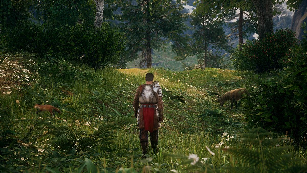 King's Bounty 2, visuale in terza persona
