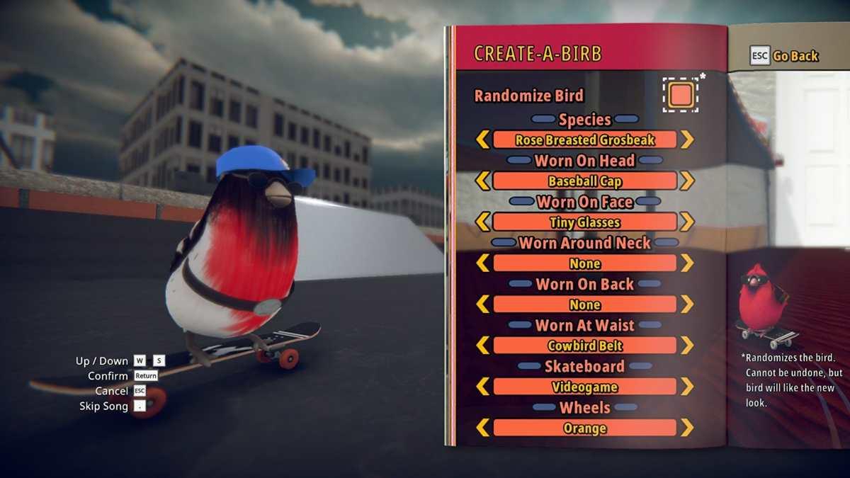 skatebird personalizzazione
